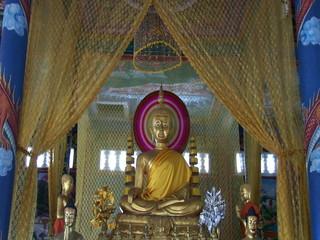 FEBRUARY 2010 The Wat Krom Buddhist Temple