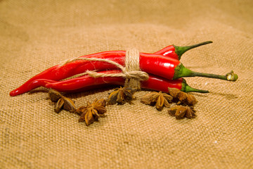 Chile peppers tied with a rope and star anise fruits on old clot