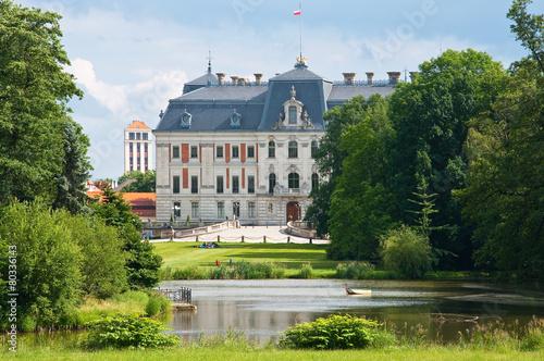 Pałac w Pszczynie - 80336143