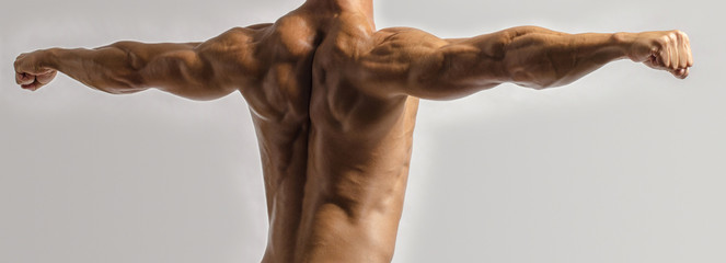 Bodybuilder showing his back and biceps, triceps muscles