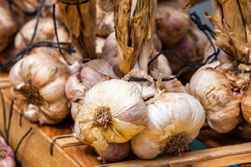 Garlic bunches in a farmers market