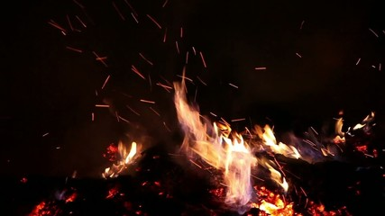 Burning fire and sparks at night