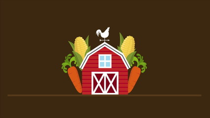 Farm illustration with corn and carrots, Video animation, HD 108