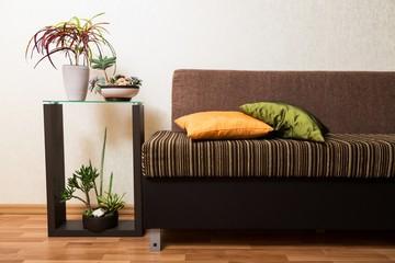 Interior. Bright cushion on a sofa, and orange chrysanthemums on