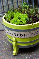 Big pot garden