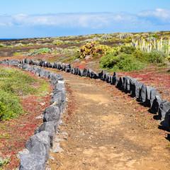 Weg durch karge Landschaft auf Teneriffa