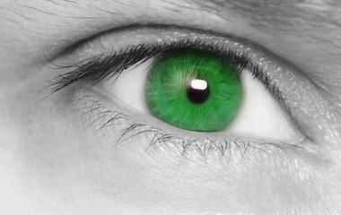 Green eye . Macro  shot