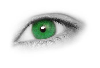 Greenl eye, isolated on white background.