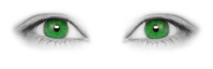 Green eyes isolated on white background