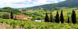 Fototapeta Panoramic view through the vineyards of Tuscany, Italy