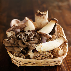 basket of assorted gourmet mushrooms
