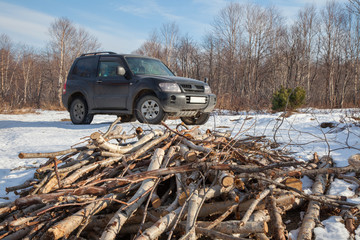 A pile of firewood. Black crossover in winter forest.