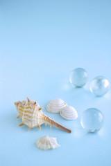 貝とビー玉 海のイメージ