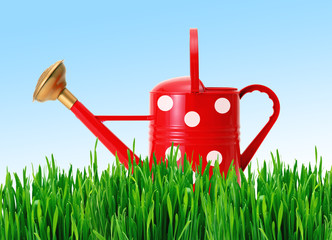 red polka dot watering can on green grass over blue sky