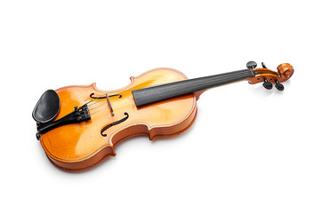 violin on white background