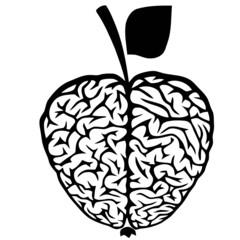Brain Shaped Apple vector