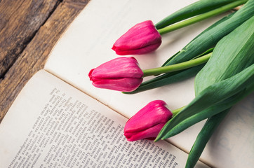 pink tulips on an open old book
