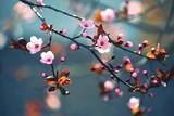 Fototapety Spring flowering Japanese tree Sakura