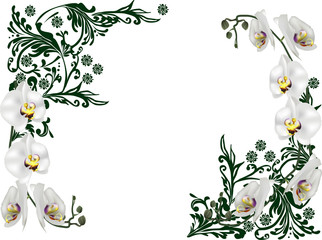 green frame decoration with white orchid blooms