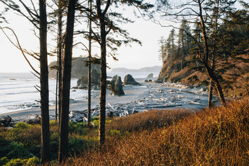 Ruby Beach at dusk, Olympic National Park, WA, USA