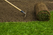 Lawned garden - 80388971