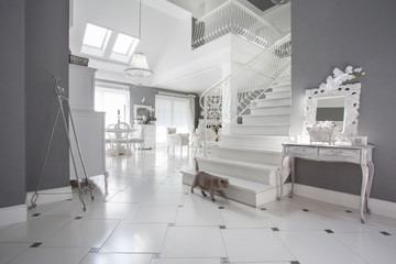 White and grey expensive interior