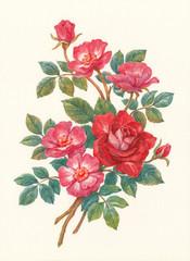 Букет с цветами шиповника, акварель.