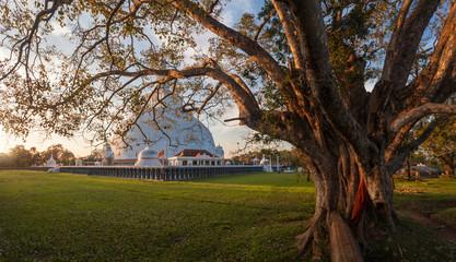 Mahatupa or Ruwanweliseya big Dagoba in Anuradhapura