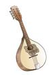 mandolin hand drawing  on white