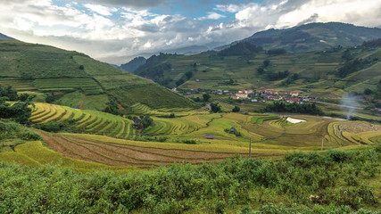 Rice fields on terraced of Mu Cang Chai.