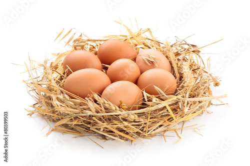 Chicken eggs in nest. - 80399503
