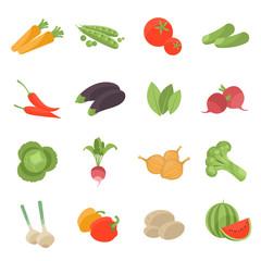 Vector vegetarian vector icons set