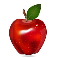 Apple isolated logo vector