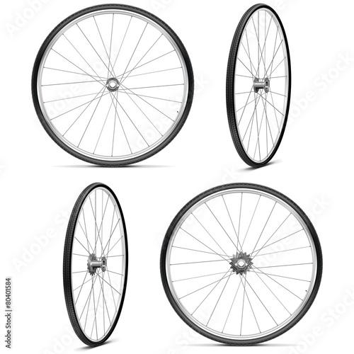 Vector Bicycle Wheels - 80401584