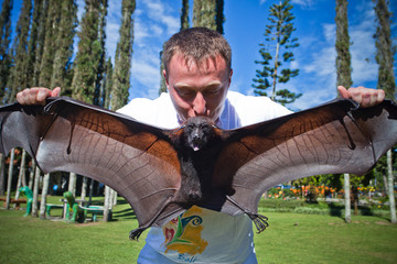 man holding on a hand flying fox