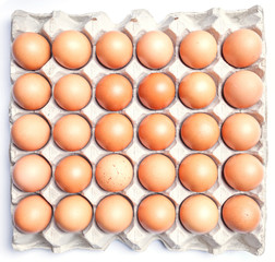 Fresh brown eggs in cardboard on white background