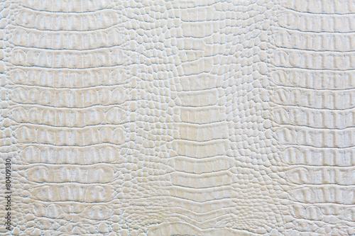 Fotobehang Stof Crocodile skin white leather background