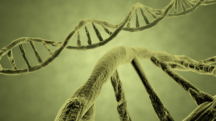 DNA strand yellow