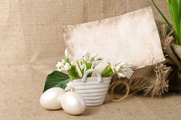 Snowdrop with  eggs for easter near empty blank for text on sack