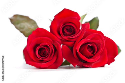Staande foto Roses beautiful three red roses isolated on white background