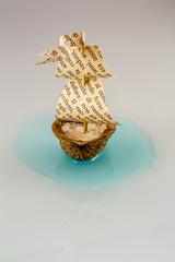 barca guscio di noce scrittore