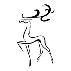Sketch silhouette of deer with large antlers. Isolated. Vector i