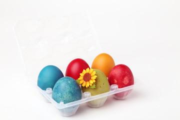Vaschetta di uova colorate per la Pasqua