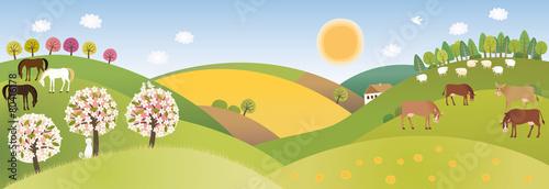 Spring panorama - 80416178