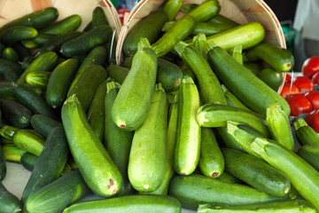 Green Zucchini Squash
