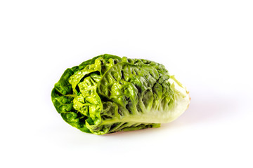 salad on a white background