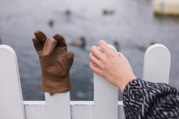 Hand holding fence with glove