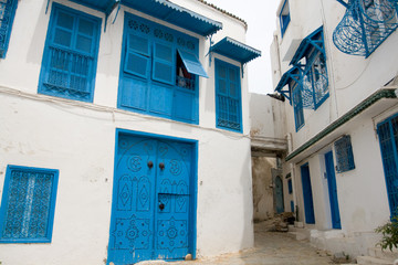 Blue doors, window and white wall of building in Sidi Bou Said,