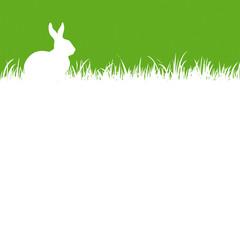 pâques fond vert