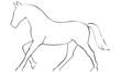 Pferd Reitsport - 80425565